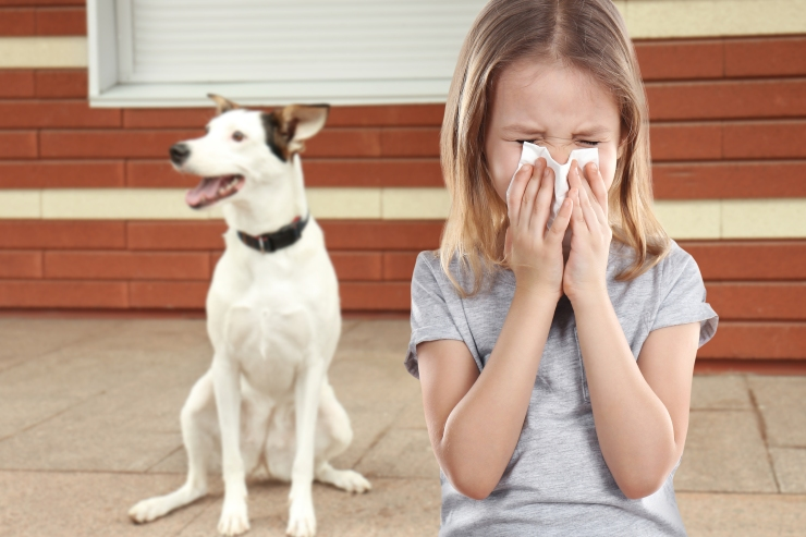 bigstock-Little-girl-with-tissue-and-pe-195856132.jpg